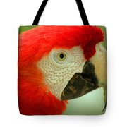 Scarlett Macaw South America Tote Bag