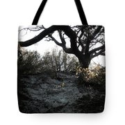 Scattered Sun Rays On The Dunes Tote Bag