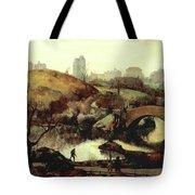 Scene In Central Park Tote Bag