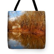 Scene In The Forest - Allaire State Park Tote Bag
