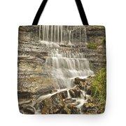 Scenic Alger Falls  Tote Bag
