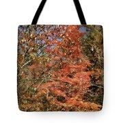 Scenic Autumn  Tote Bag
