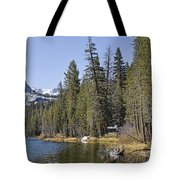 Scenic Beauty Tote Bag