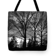 Scenic State Capital Tote Bag