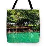 Scenic Swans Tote Bag