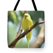 Scenic View Of An Adorable Yellow Parakeet Tote Bag