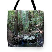 Scents And Subtle Sounds On Mount Tamalpais Tote Bag