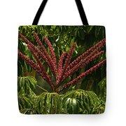 Schefflera Flower Tote Bag