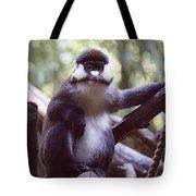 Schmidts Guenon Tote Bag