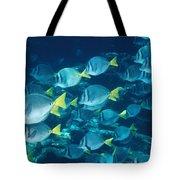 School Of Surgeonfish Cruising Reef Tote Bag
