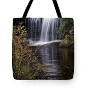 Schoolhouse Falls Tote Bag by Rob Travis