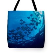 Schooling Cownose Rays Tote Bag