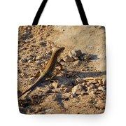 Schreiber's Fringe-fingered Lizard Tote Bag