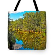 Schroon River Reflection In The Adirondacks-new York Tote Bag