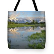 Schwabacher Landing Morning Tote Bag