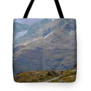 Scoping The Alps Tote Bag