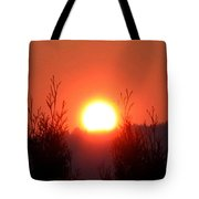 Scorching Sun Tote Bag