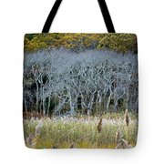 Scorton Creek Treeline Tote Bag