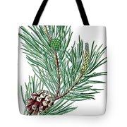 Scots Pine, Pinus Silvestris Tote Bag