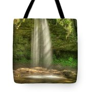 Scott Falls 4741 Tote Bag