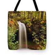 Scott Falls Tote Bag