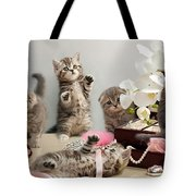 Scottish Fold Cats Tote Bag