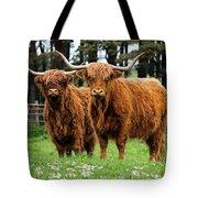 Scottish Highland Cows Tote Bag