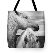 Scottish Horses Tote Bag by Diane Diederich
