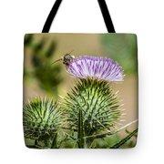 Scottish Thistle Tote Bag