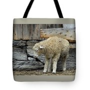 Scratching Board Tote Bag