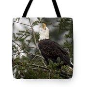 Screamin Eagle Tote Bag