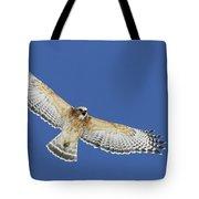 Screaming Hawk Tote Bag