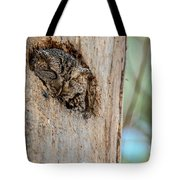 Screech Owl In A Tree Tote Bag