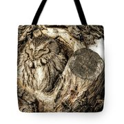 Screech Owl In Cavity Nest Tote Bag