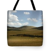 Screen Saver Tote Bag