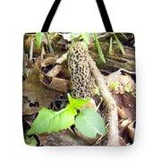 Scrumptious Beauty Tote Bag