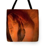 Sculpted By The Elements Tote Bag