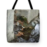 Sculpture Garden IIi Tote Bag