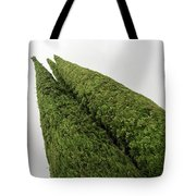 Sculpturesque Greenery - Three Cypress Trees Chiseled Against The Sky Tote Bag