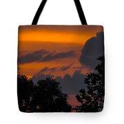 Mulberry Tree Sunrise Tote Bag