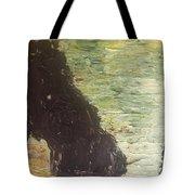 Sea Arch Tote Bag