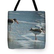 Sea Birds #2 Tote Bag
