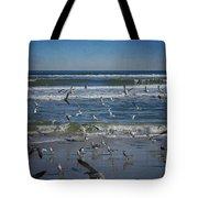 Sea Birds Feeding On Florida Coast Dsc00473_16 Tote Bag