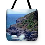 Sea Cave And Nesting Boobies Tote Bag