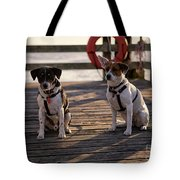 Sea Dogs Tote Bag