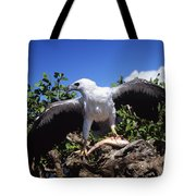 Sea Eagle Tote Bag