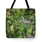 Sea Grape Dune Tote Bag
