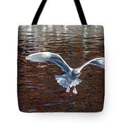Sea Gull Landing Tote Bag