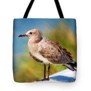 Sea Gull Of Boca Grande Tote Bag
