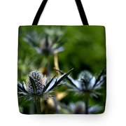 Sea Hollies Tote Bag